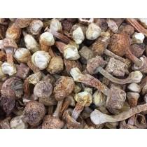 巴西磨菇(150g)