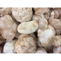 猴頭菇(乾品)(150g)