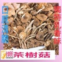 【茶樹菇】300克/口感清脆 獨特乳香