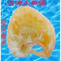 冷凍大魚翅600公克/膠質豐富/口感極佳/趐中極品