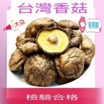 【台灣香菇 】(大朵)300克╱滋味鮮美 肉質鮮嫩